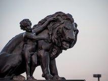 孩子和狮子 库存图片