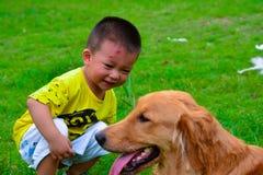 孩子和金毛猎犬狗 免版税库存照片