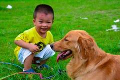 孩子和金毛猎犬狗 库存照片