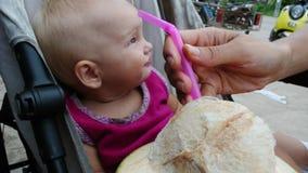 孩子喝着从秸杆的一个椰子 影视素材