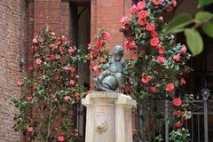 孩子喷泉横跨一只乌龟在锡耶纳,意大利 免版税库存图片