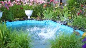 孩子在一个小湖游泳在一个热的夏日 男孩跳进水,创造飞溅水 庭院 股票视频