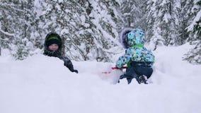 孩子在使用与雪的公园 笑声和喜悦从第一雪 降雪 走在新鲜空气 健康 股票视频