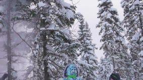 孩子在使用与雪的公园 笑声和喜悦从第一雪 雪从冷杉分支落 进来 股票视频