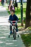 孩子在公园骑一辆自行车 库存照片