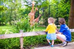 孩子在动物园里 免版税库存图片