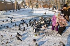 孩子在喂养鸟的公园在冬天 免版税库存图片