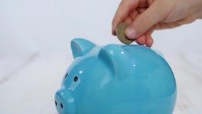 孩子在存钱罐中投入硬币金钱,在一张木桌上 股票录像