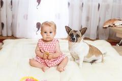 孩子在家坐在一张轻的地毯的地板有混血狗最好的朋友的与的小滑稽的白种人女孩 免版税图库摄影