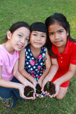 孩子在手上的拿着年轻幼木植物 免版税库存照片