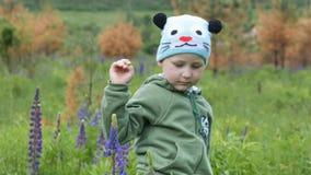 孩子在春天在一个绿色领域的在紫色烛光颜色 影视素材