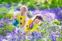 孩子在有会开蓝色钟形花的草花的一个庭院里 图库摄影
