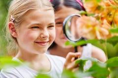 孩子在有寸镜的庭院里探索自然 图库摄影