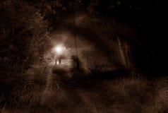 孩子在森林里 免版税库存照片