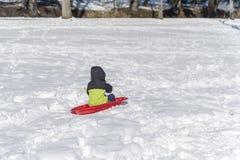 孩子在白雪乘坐从山的一雪橇 免版税库存图片