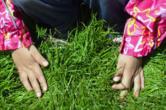 孩子在年轻草递 免版税图库摄影