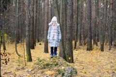 孩子女孩在秋天森林里 免版税库存图片