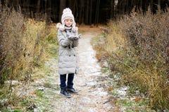 孩子女孩在秋天森林里 库存照片