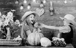 孩子女孩男孩穿戴牛仔农夫样式帽子庆祝收获节日 t 小学秋天 免版税库存照片
