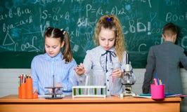 孩子学习生物或化学学校 r 学校女孩学习 探索生物分子 ?? 免版税库存照片