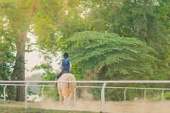 孩子学会在河附近骑马 免版税库存图片
