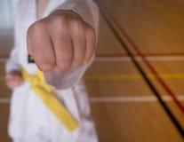 孩子实践跆拳道 库存图片