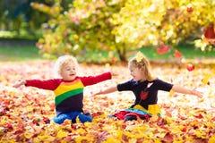 孩子戏剧在秋天公园 秋天的孩子 免版税图库摄影