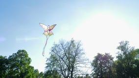 孩子戏弄,有风筝的小男孩在绿草的空气奔跑 股票录像