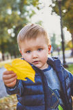 孩子拿着叶子 免版税库存图片