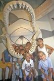 孩子摆在与海洋哺乳动物在壳工厂,迈尔斯堡,佛罗里达的巨型下颌 免版税库存图片