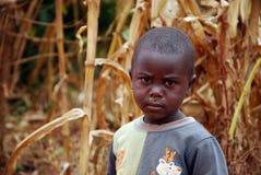 孩子日常生活的片刻在Pomerini村庄 免版税库存图片