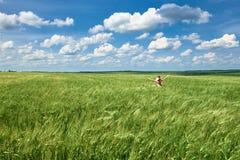 孩子沿麦田,明亮的太阳,美好的夏天风景走 库存照片