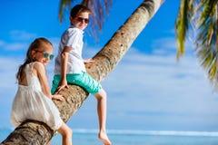 孩子海滩假期 库存图片
