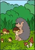 孩子的动画片动物 小的逗人喜爱的猬 图库摄影