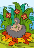 孩子的动画片动物 小的逗人喜爱的猬 库存照片