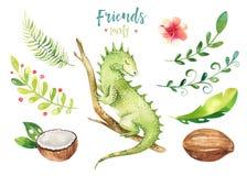 孩子的小动物托儿所被隔绝的例证 水彩boho热带图画,儿童逗人喜爱的热带鬣鳞蜥 免版税库存照片
