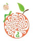 孩子的迷宫难题与毛虫和苹果 迷宫例证,包括的解答 皇族释放例证