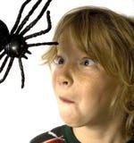孩子蜘蛛 免版税图库摄影