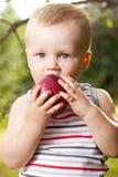 孩子设法食用一个红色苹果 免版税库存图片