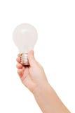 孩子递拿着电灯泡。 想法概念。 库存照片