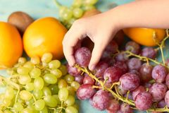 孩子采取从板材的果子 免版税库存照片