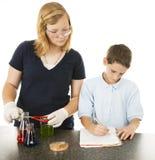 孩子项目科学 免版税库存照片