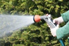 孩子,男孩,浇灌橡胶水管在庭院里,乡间别墅,浇灌 免版税库存照片