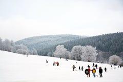 孩子滑冰在雪的冬天跑的雪橇 免版税库存照片