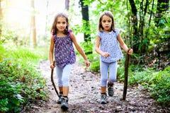 孩子-双女孩在山步行 免版税库存图片