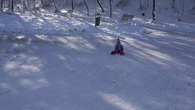 孩子Sledding在雪,女孩使用在冬天的,孩子Sledging在公园4K 股票视频