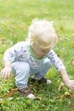 婴孩学会走和收集下落的栗子 免版税库存照片