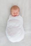 婴孩新出生休眠 免版税库存图片