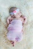 婴孩新出生的一点 免版税图库摄影
