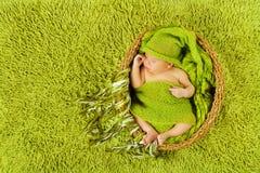 婴孩新出生睡觉在羊毛帽子,绿色地毯 免版税库存图片